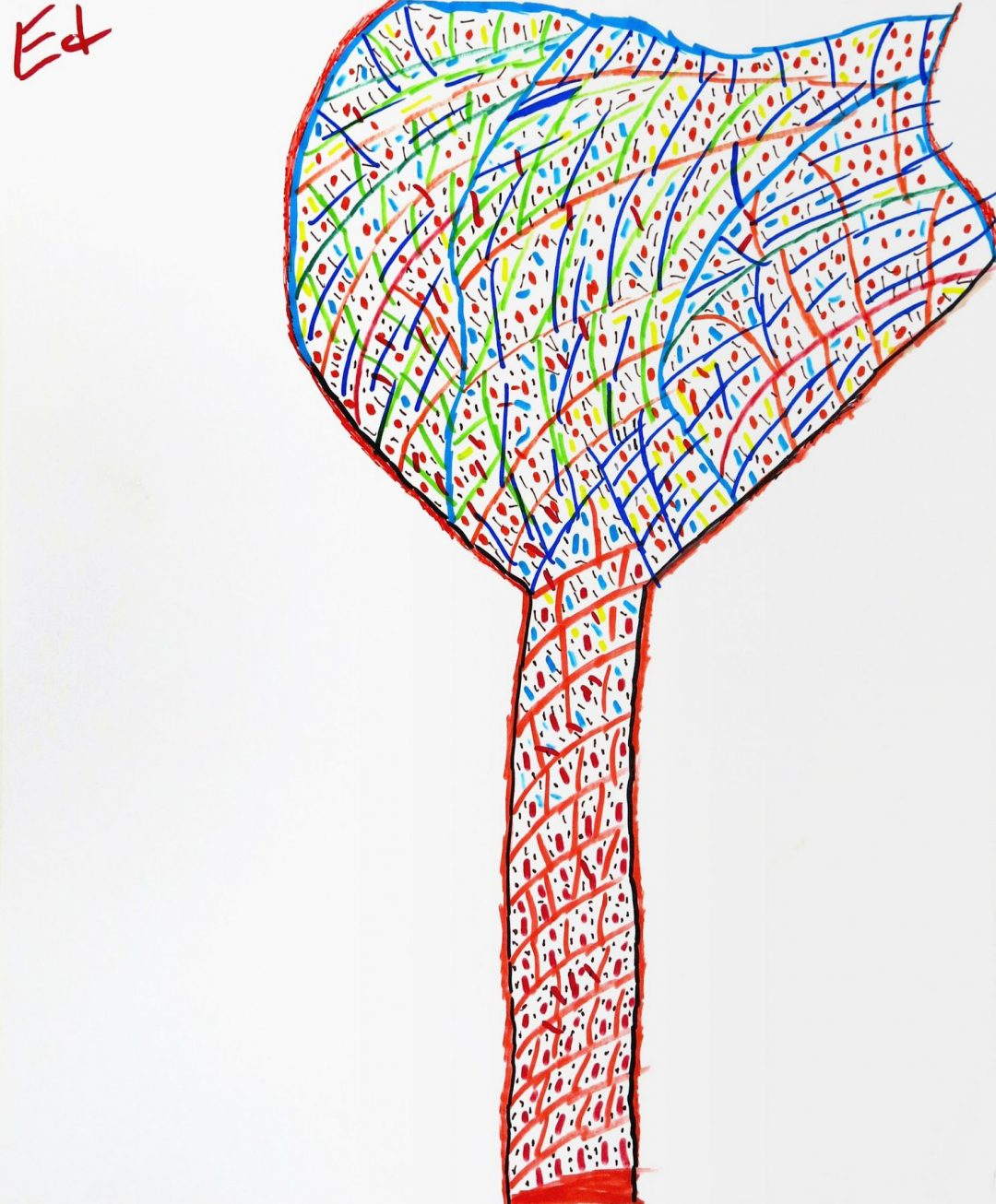 Marker Drawing by Ed, 14x17, 2019